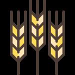 002-wheat
